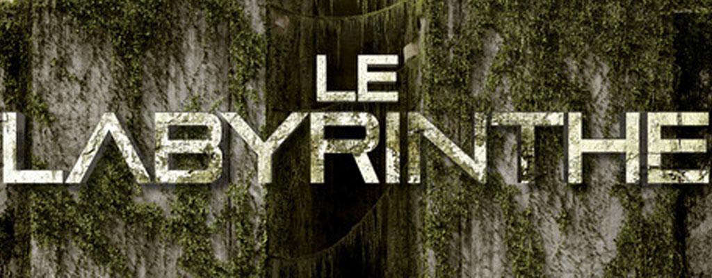 Le labyrinthe, l'épreuve, tome 1 de James Dashner