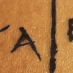 Kaleb tome 1 de Myra Eljundir