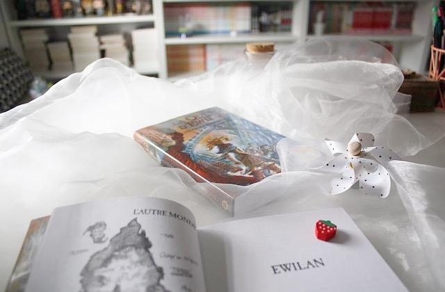 La quête d'Ewilan, tome 2 Les frontières de glace de pierre bottero